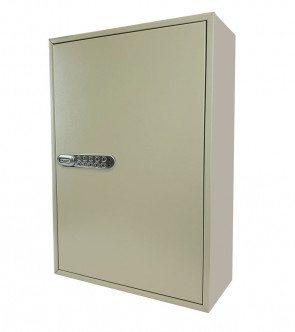 Economy Digital Key Cabinet - 100 Bunches