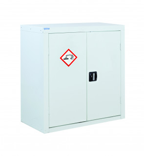Acid And Alkali Storage Cabinet 2 Door - Large