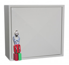 Padlock Cabinet 25 Locks - Padlockable Cam